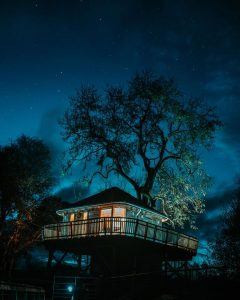 Stargazing in a private treehouse