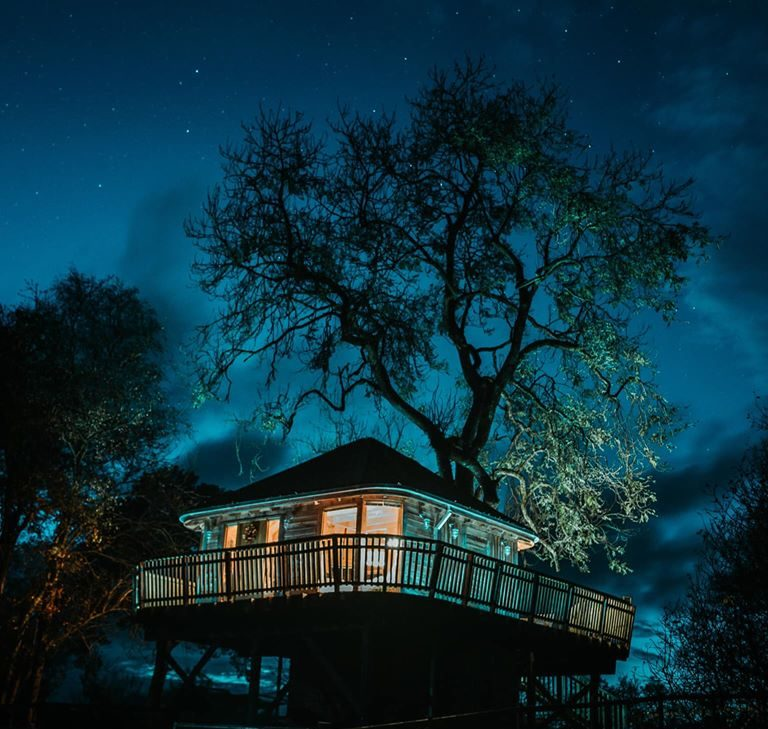 Stargazing in a private treehouse UK