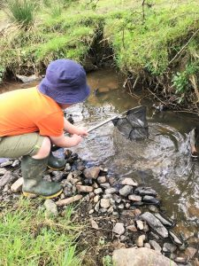 Back to nature with pond dipping